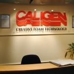 Welcome to Caligen